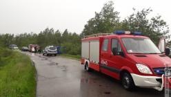 Przewróciła się ciężarówka wioząca trzodę chlewną