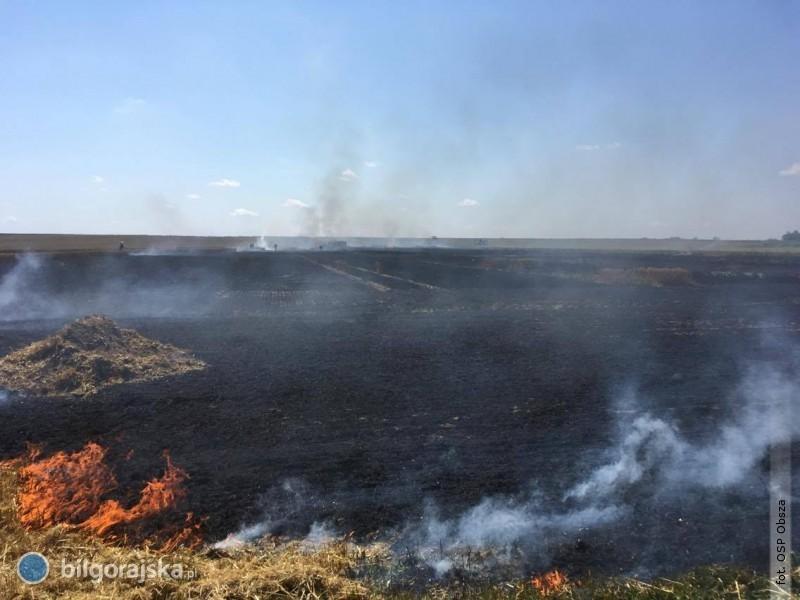 Pożar na polu
