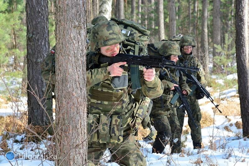 Żołnierze Obrony Terytorialnej ćwiczyli wbiłgorajskich lasach