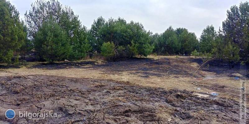 Sezon na wypalanie traw rozpoczęty