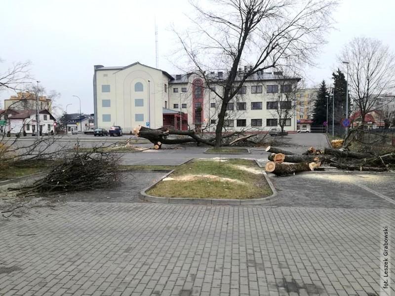 Drzewa poszły pod piłę