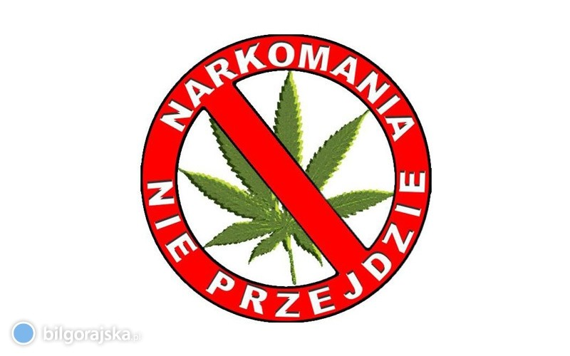 Narkotykowy weekend