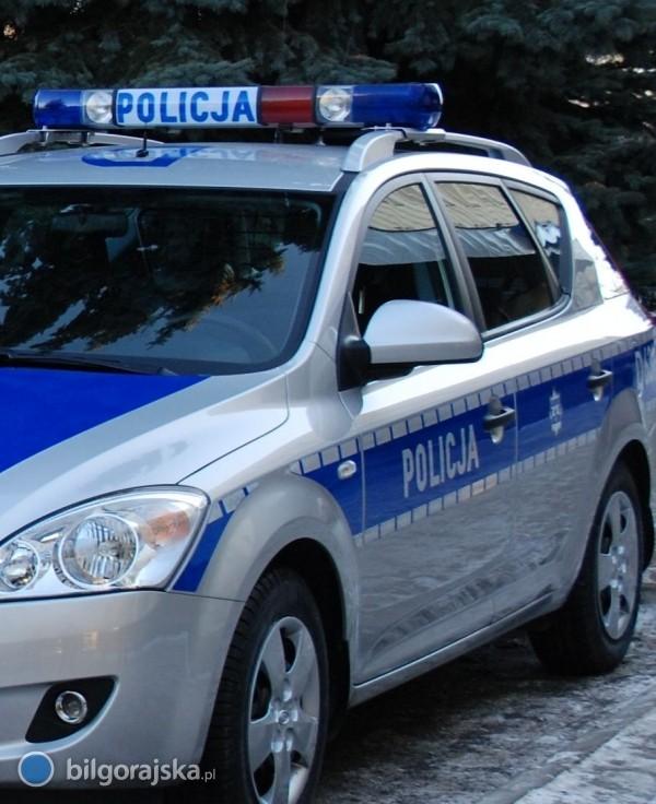 Policyjny radiowóz uderzył wpsa