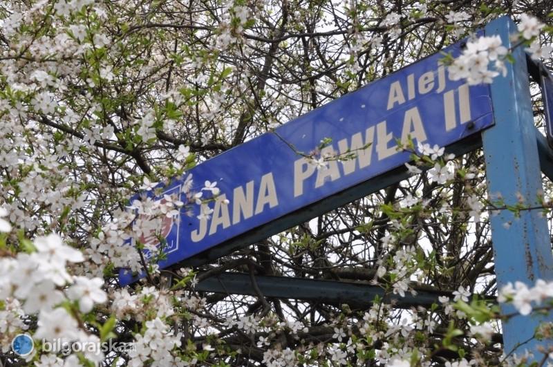 2,3 mln od województwa do przebudowy Al. Jana Pawła II