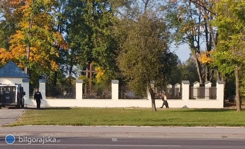 Nadzy mężczyźni biegali wokół cmentarza bo napadły ich żmije [AKTUALIZACJA]