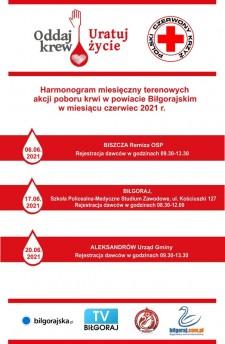 Akcja krwiodawstwa wAleksandrowie