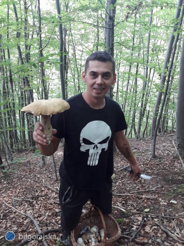 Raj dla grzybiarzy