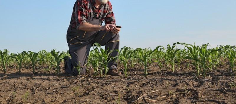 Jak wybrać najlepszy kredyt dla rolnika?