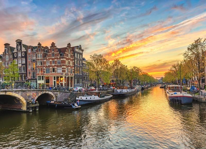 Holandia nadal popularna wśród mieszkańców Biłgoraja