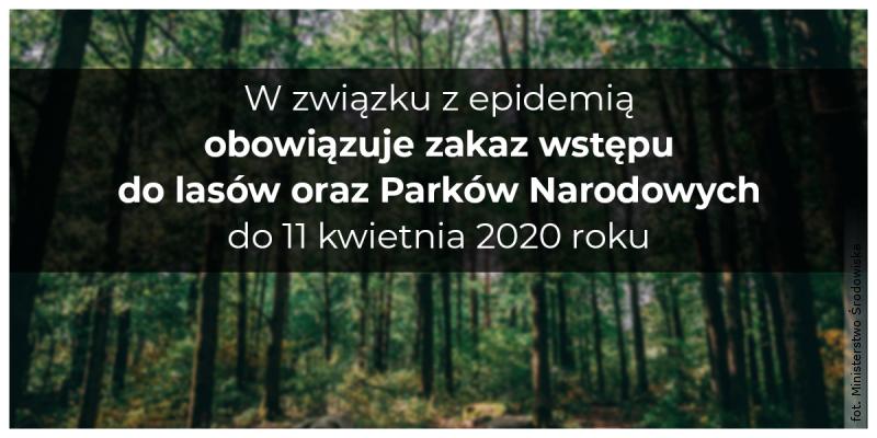 Obowiązuje zakaz wstępu do lasów