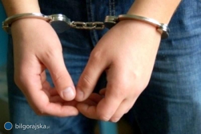 Szarpali się zpolicjantami. Dwóch mieszkańców Biłgoraja usłyszało zarzuty